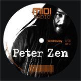 Dj Peter Zen presents : Technosophy Vol. 3 @ Midi Radio(02_22_2012)