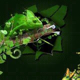 Moysikes Periptyxeis - s02e03 - Jungle 3/10/13 - NovaFM 106