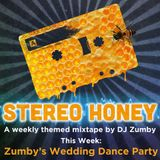 Stereo Honey - Zumby's Wedding Dance Party