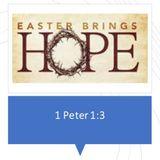Easter Brings Hope - Audio