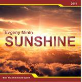 Evgeny Minin - Sunshine  [Progressive breaks mix]