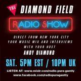 Radio Pure Gently - The Diamond Field Radio Show - 27-02-2016