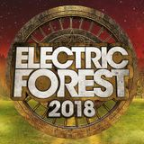 Jade Cicada 6/21/18 The Forest Stage, Electric Forest W1 2018