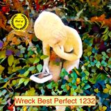 Wreck Best Perfect 1232