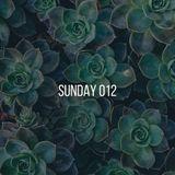 Sunday Podcast / 012
