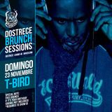 T-Bird for Dostrece Sessions