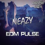NeaZy - EDM Pulse | Christmas Edition