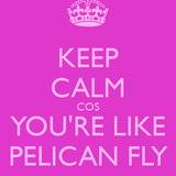 Pelican Fly - Diplo and Friends (09-08-2013)