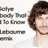Gotye - Somebody That I Used To Know (Chris Lebaume Remix)