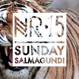 Sunday Salmagundi Nr.15 - Mixed by Vatsgoed (Mano Fico)