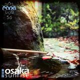 Osaka Sunrise 56