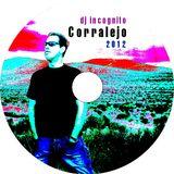Corralejo 2012 mixed by DJ Incognito
