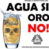 Radio Conspiranoia Vol. XVI - Agua si, oro no! (Pascua Lama)