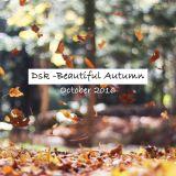 Dsk-Beautiful Autumn