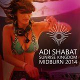 Sounds from Sunrise Kingdom  (Midburn 2014)