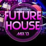 FUTURE HOUSE MIX 13