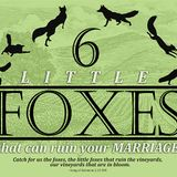 """Litttle Foxes - MARRIAGE"" by Dusty Johnson"