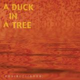 A Duck in a Tree 2012-11-10 | A Box of Fire