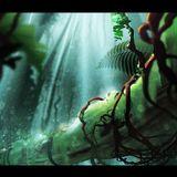 Deeper into the Jungle