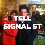Tell x Signal ST • LeMellotron.com