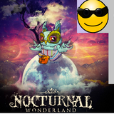Discovery Project: Nocturnal Wonderland 2013 [DJ Messi Dirty Mix]