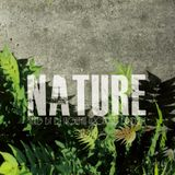 """Nu MIX CD """"NATURE"""" Sample MIX by DJ SHOWTIME from MAD BRIDGE"""