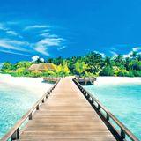 Tropical Vibes Summer Mix 2017
