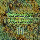 Psychedelic Wonderfuzz #11