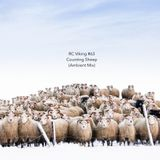 #63 - Counting Sheep (Ambient Special Vol. 2)
