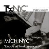XXVIII TSoNYC®   MichiNYC  Knobs at work session B   From Treviso Italy