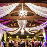Wedding Reception - July 2015 (Excerpts)
