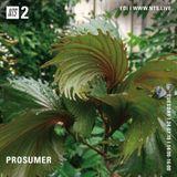 Prosumer - 24th July 2018