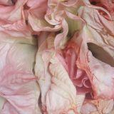 L'odeur des fleurs sauvages mix / miris divljeg cveca