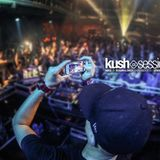 #019 KushSessions - Almost Radical Guestmix