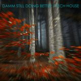 Damm Still Doing Better / tech house