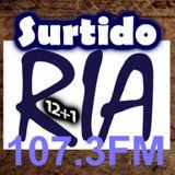PROGRAMA 12+1 - Surtido RIA