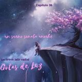 "Gotas de Luz ""Un sueño soñaba anoche"" (Programa 36)"