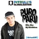 Puro Pari Mix (Pitbull's Globalization Ch. 13 XM Radio)