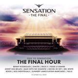 Fedde Le Grand - Live @ Sensation 'The Final' Amsterdam (Netherlands) 2017.07.08.
