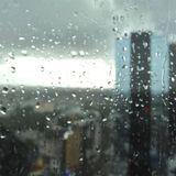 The Metal Madhouse presents: November Rain