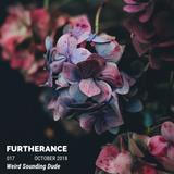 Weird Sounding Dude - Furtherance 017 (October 2018)