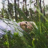 Hemisferio Boreal | Mágica Estonia