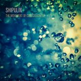Shipulin - The movement of consciousness