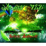 Washek 723 - Bass Adventure