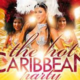 CARIBBEAN PARTY MIX ft DJ SPARKEY