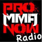 Pro MMA Now Radio - Alvey, Southern, McDaniel & St. Preux