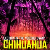 Chihuahua - Exotica In The Voodoo Swamp