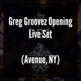 Greg Groovez Live From Avenue New York Opening For PS1 (March 17, 2017)