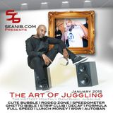 Seani B's Dancehall Art Of Juggling Jan 2015