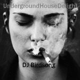 UndergroundHouseDelight